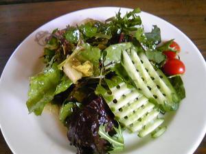 「カレーのサラダ」forest cafe BEAR(小国町)