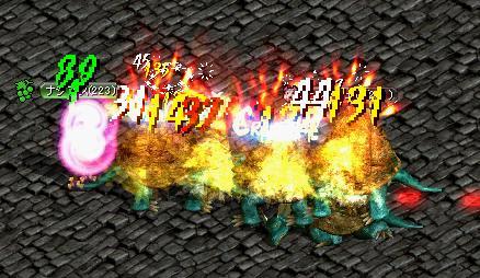 20070203195413.jpg