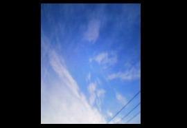20070427014101.jpg