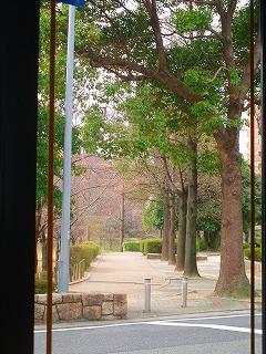 窓からの眺め・・