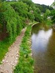 中橋から見た川