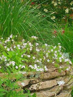 石積みの花壇