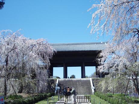 東郷寺の山門