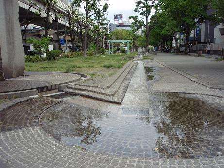 玉川上水緑道1