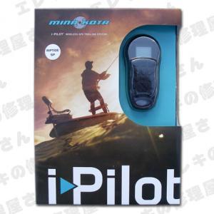 i-pilot.jpg