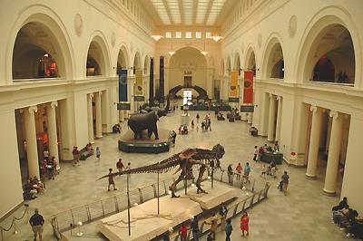 フィールド博物館シカゴ 二階より