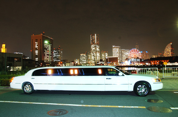 Limousine-Support.jpg