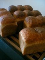 あまくないパン。