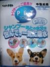 20060419_001.jpg