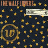 Bringing Down the Horse / Wallflowers