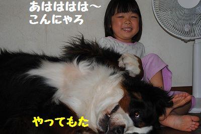 DSC_0227_20110802112516.jpg