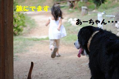 DSC_0594.jpg