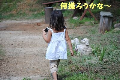DSC_0601.jpg
