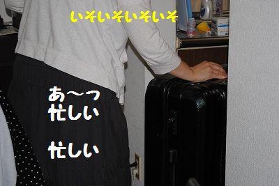 DSC_1554.jpg