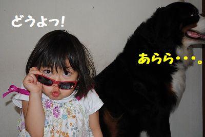 DSC_1747_20110607103842.jpg