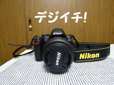 P1100982_20100816001543.jpg