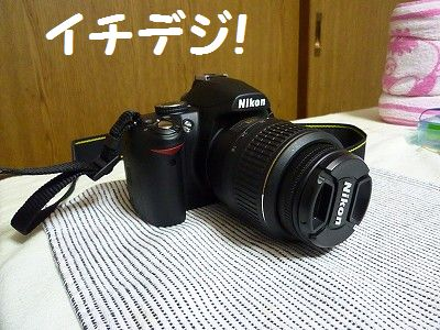 P1100985_20100816001543.jpg