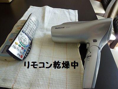 P1140780.jpg