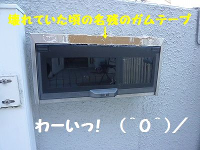 P1150879_20101104123210.jpg