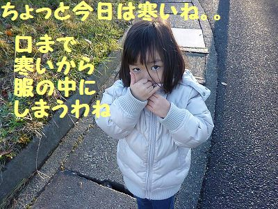 P1170662.jpg