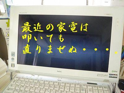 P1200142.jpg