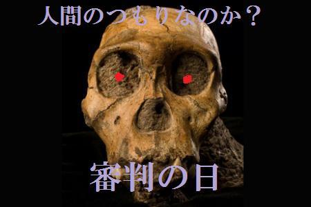 maustralopithecus-sediba-skull-front-view_18457_big_20100510172041.jpg