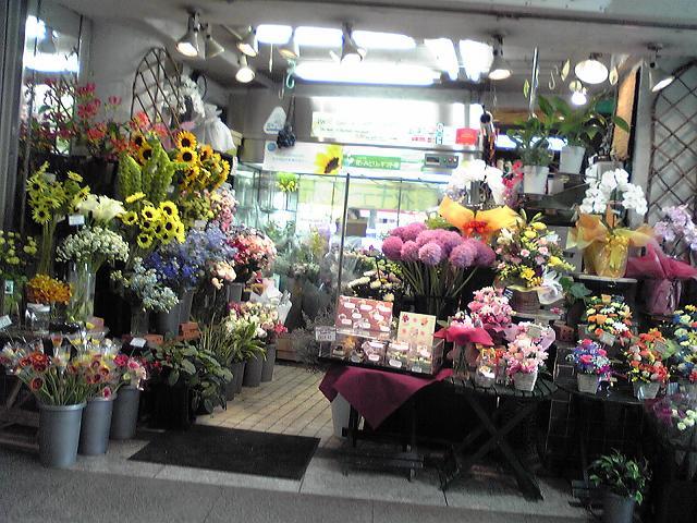 002 flower