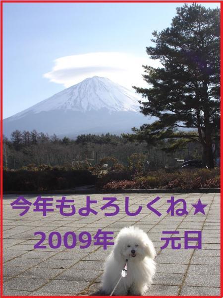 134_convert_20090101.jpg