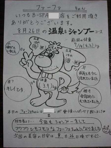 056B繧ケ繝狙convert_20090826214241