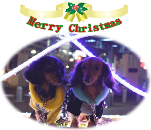メリー クリスマス