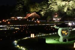 2008年 幻想庭園1