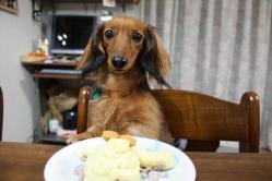手作りケーキでお祝い