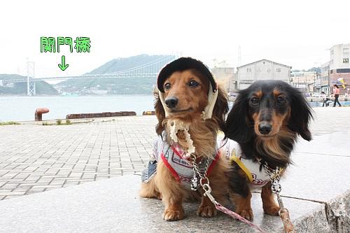 関門橋と一緒
