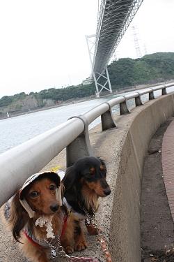 関門橋の下で・・・