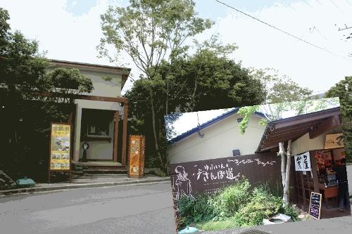 お箸&ドッグカフェ