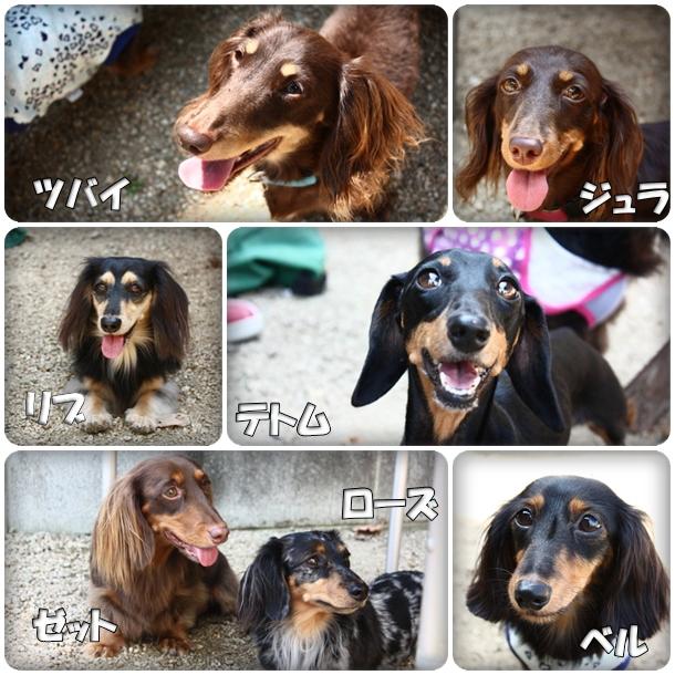 メンバー紹介2