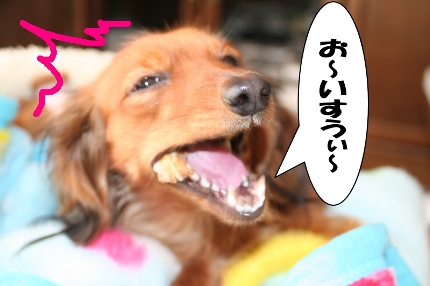 IMG_4583.jpg