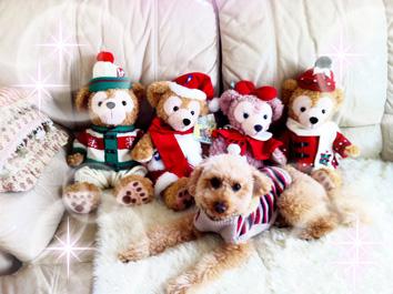 ダッフィー クリスマス