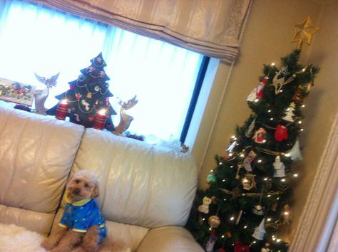 れーさんとクリスマスツリー