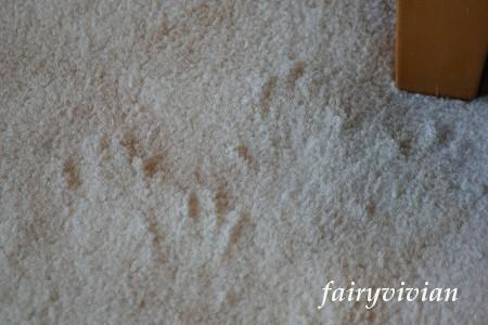 fairy121801.jpg