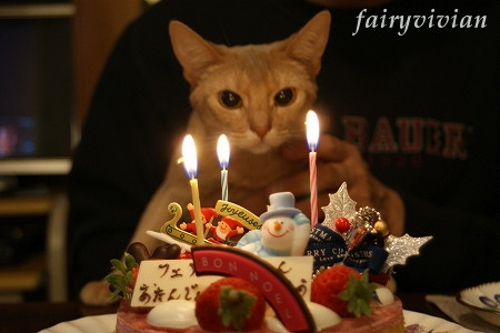 fairy122302.jpg