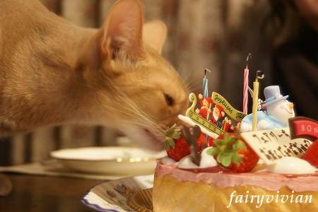 fairy122303.jpg