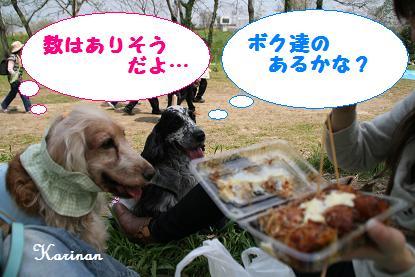 ブログ 4.8 ⑤ IMG_0066