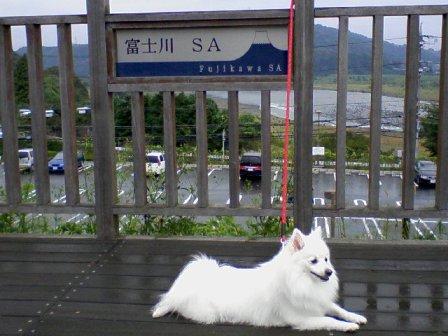 hujigawa.jpg