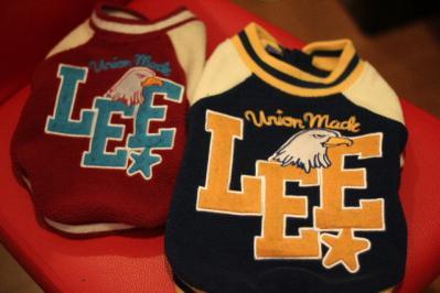 追加Lee1