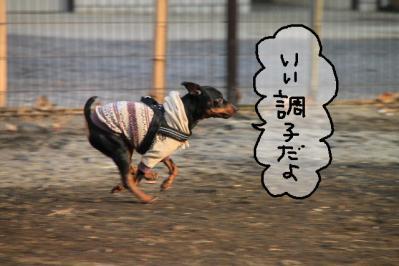 おソロ三銃士6