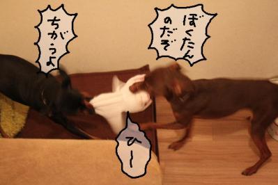 2011_03_23_6758.jpg