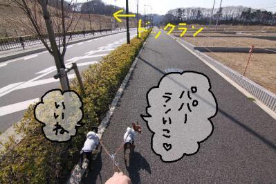 2011_04_01_6876.jpg