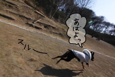2011_04_01_6967.jpg