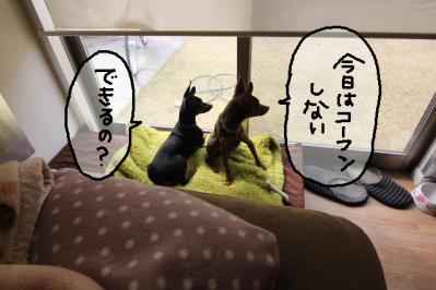 2011_04_02_7076.jpg
